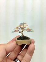 Informal Upright Mame wire bonsai tree by Ken To by KenToArt