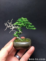 Green wire bonsai tree with deadwood by Ken To by KenToArt
