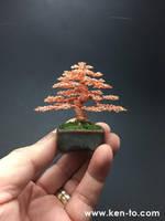 Ken To Informal Upright Bonsai Tree Sculpture by KenToArt