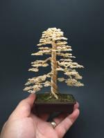 Large formal upright wire bonsai tree by Ken To by KenToArt
