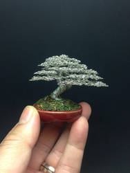 Silver wire bonsai tree sculpture by Ken To by KenToArt