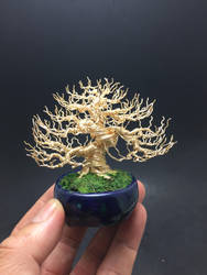 Gold deciduous wire bonsai tree by Ken To by KenToArt