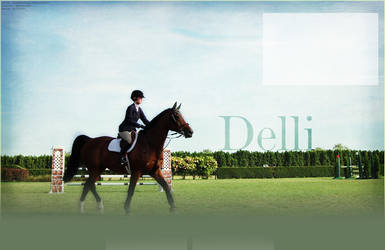 Delli show horse layout by DelliHL