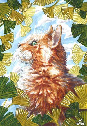 Ginkgo Cat by Ricoro