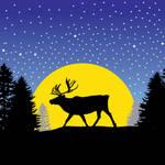 Caribou Moon by JulieLukeartwork