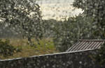 Raindrop Bokeh by alban-expressed