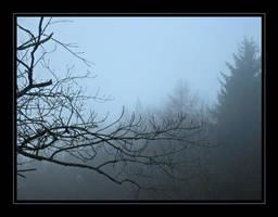 Winter's Mist by Ratafluke