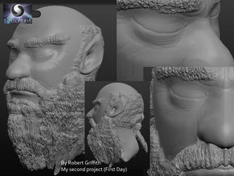 Wood Elf Elder: My Second Sculptris Project by AskGriff