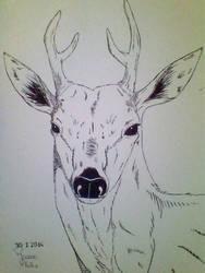 Oh Deer by JoAsia9
