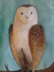 owl by JoAsia9