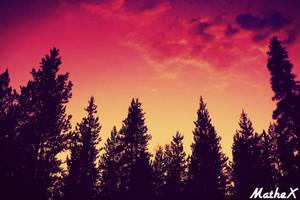 Orange Sunset by TLL-MatheX