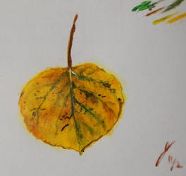 Little Leaf Sketch 1 by OpenShell