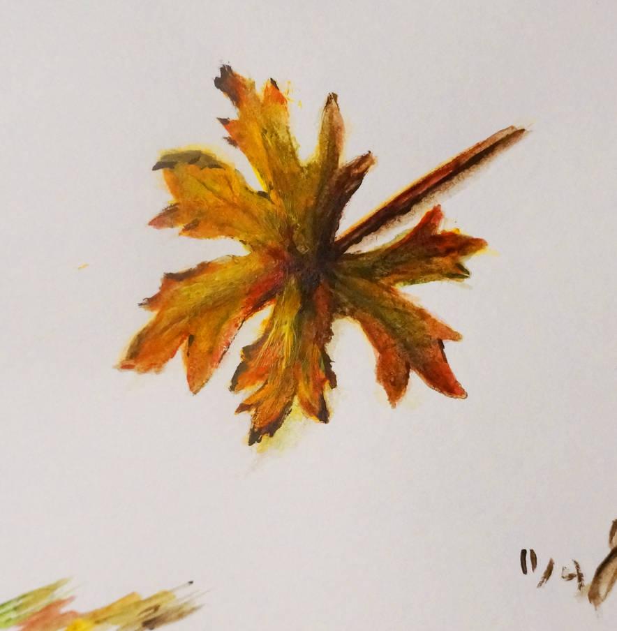 Little Leaf Sketch 2 by OpenShell