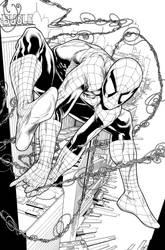 Spider-man by DexterVines