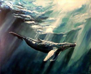 Whale enjoying the sunlit waters by MissLi30