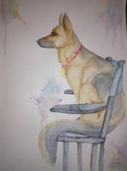 Thunderbolt the wonder dog by Fawnd