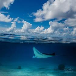 Maldivian Dreams by Vitaly-Sokol