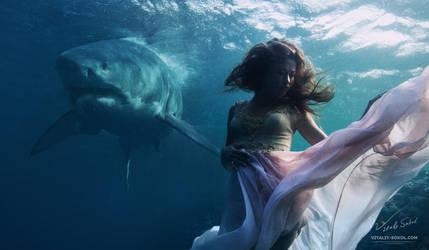 Underwater Dance by Vitaly-Sokol
