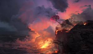 Spring Fire by Vitaly-Sokol