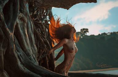 JungleBook by Vitaly-Sokol