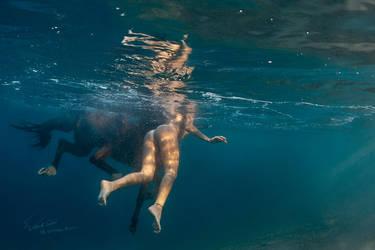 Horse Underwater by Vitaly-Sokol