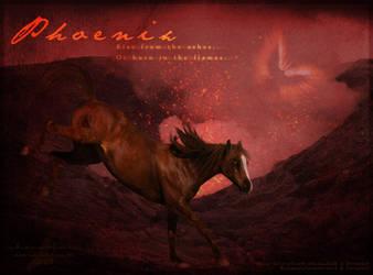Phoenix - Apocalypse by Unknownandfrantic