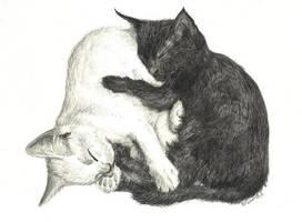 Commission - Kittens 2 by d3javu3