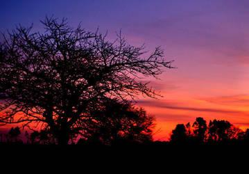 sunrise 110 by glad2626