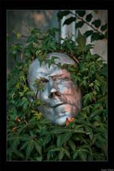 Entanglementation by cursed-soul