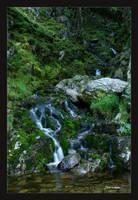 Elan Waterfall 148 by Deb-e-ann