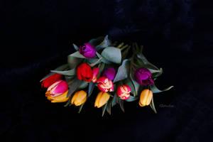 Vivid by Deb-e-ann