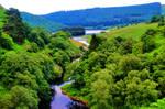 Elan Valley River by Deb-e-ann