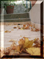 Come le foglie d'autunno by EstelAlasse