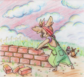 PKMNA: Building Walls by lady-obsessed