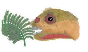 Ugly little mouse lizard by ijreid