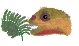 ijreid's Profile Picture