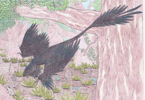 A correct Microraptor by Dontknowwhattodraw94