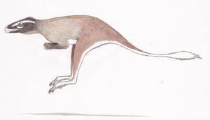 Kangaroo lizard by Dontknowwhattodraw94