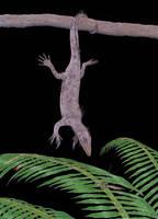 Anteatermantischameleonmonkeybirdosaurus by Dontknowwhattodraw94