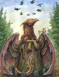 birds. by zarathus