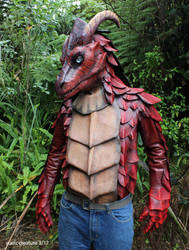 (another dragon costume) by zarathus