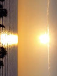 Daytona Sunrise 3 by pookihontis