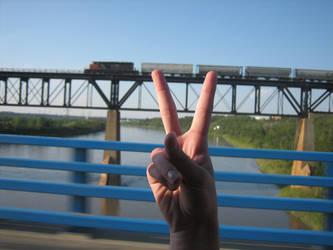 peace train by meganathebanana