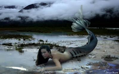Dying Mermaid by jlm