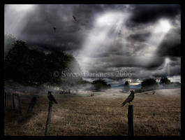 Dark Glow by MySweetDarkness