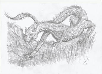 der Tatzelwurm by dracontologe