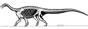 Riojasaurus by banchero