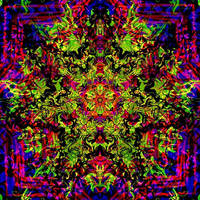 Veturo by psychedelics