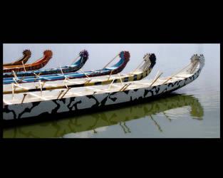 Dragon Boats by PenelopeT