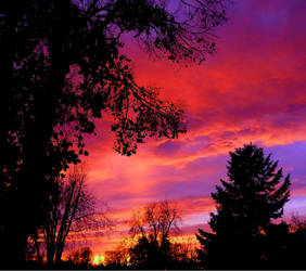 Daylight Rising by XxDarkbutterflyxX